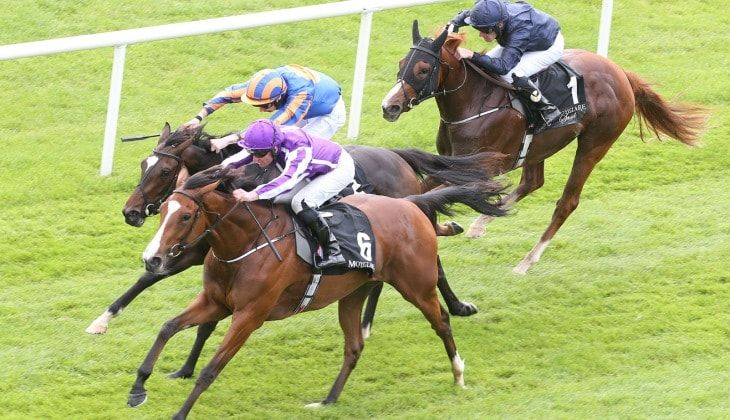 The Coolmore Fastnet Rock Matron Stakes LICW
