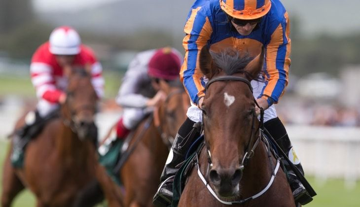 Goffs Vincent O'Brien National Stakes