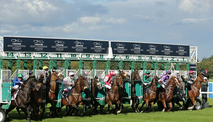 guide for new racegoers 'the going' explained