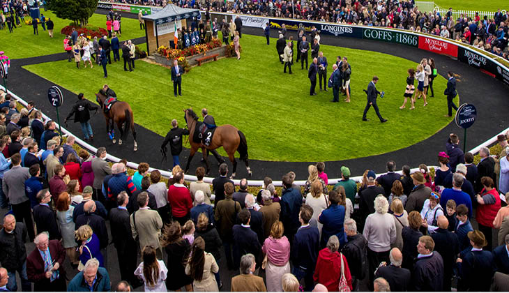 guide for new racegoers - Leopardstown and The Curragh racecourses