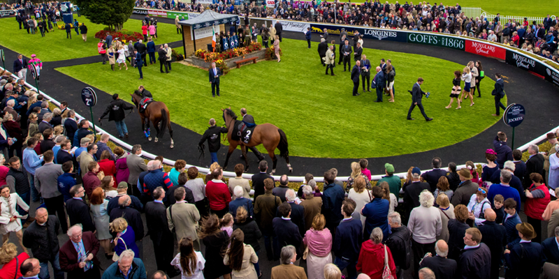 the curragh enclosure